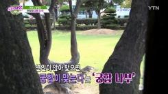 [캠퍼스24_캠퍼스 탐험대] 대학 속 전설의 장소(인하대, 한양대)