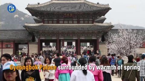 Concert at Gyeongbok Palace