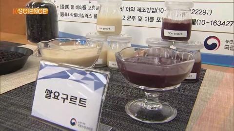 [K-SCIENCE] Yogurt Made from Rice