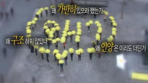 노란 우산들고 거리로 나온 동포들
