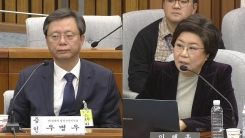 최순실 국정조사 5차 청문회 (19)