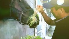 [YTN 스페셜] 2015 농어촌 희망 프로젝트 '농비어촌가' : 6차 산업 농업의 새로운 길을 열다