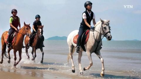 [YTN 스페셜] 섬 아이, 말 달리다 1부 : 꿈을 만나다