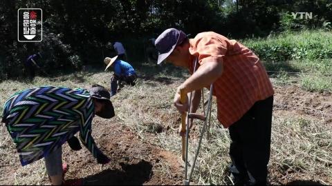 [YTN 특별기획] 음식문맹탈출 2부 : 농부와 농사 안 짓는 농부