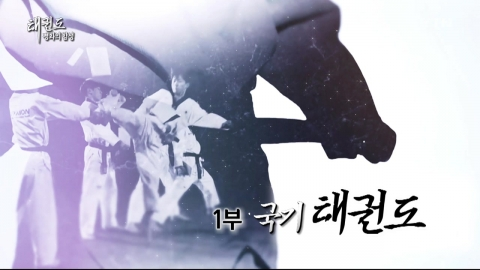 [YTN 스페셜] 태권도 '평화의 함성' 1부