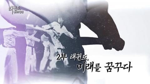 [YTN 스페셜] 태권도 '평화의 함성' 2부