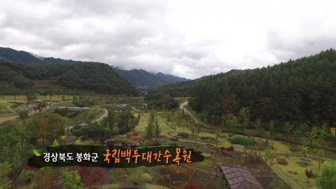 [수목원 산책] 국립백두대간수목원