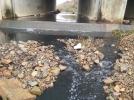 [사고현장]형산강 오염수 무단방류
