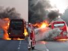 [사고현장]고속도로상에서 전세버스 전소