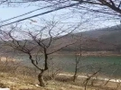 [사고현장]강촌 등선폭포 맞은편 산불