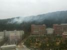 [사고현장]안양예고 근처 산에서 불