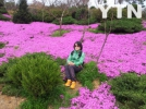 [신기한자연]진안에 봄이 왔네요