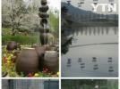 [신기한자연]서울대공원의 봄