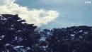 [신기한자연]푸르른 7월 하늘