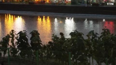 [순간포착] 물위에 뜬 여름밤의 사랑