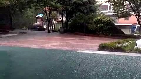 한정판 수퍼카에 휩싸인 불길 '한 대에 5억'
