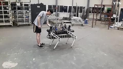 [기타] 네발 로봇