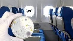 세계에서 가장 깨끗한 항공사에 日 1위, 아시아나와 대한항공은 몇 위?