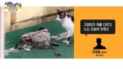 [12월 9일 시민데스크] 핫 제보영상