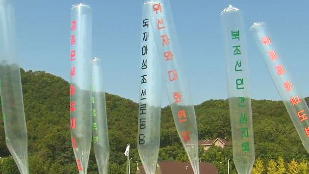 """법원 """"대북 전단 살포 제지는 적법"""""""