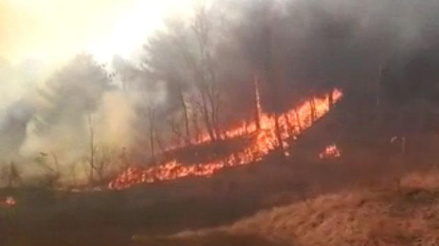 '바싹 마른 산과 들' 전국에서 산불 전쟁