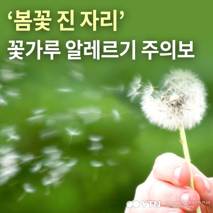 [한컷뉴스] '봄꽃 진 자리' 꽃가루 알레르기 주의보