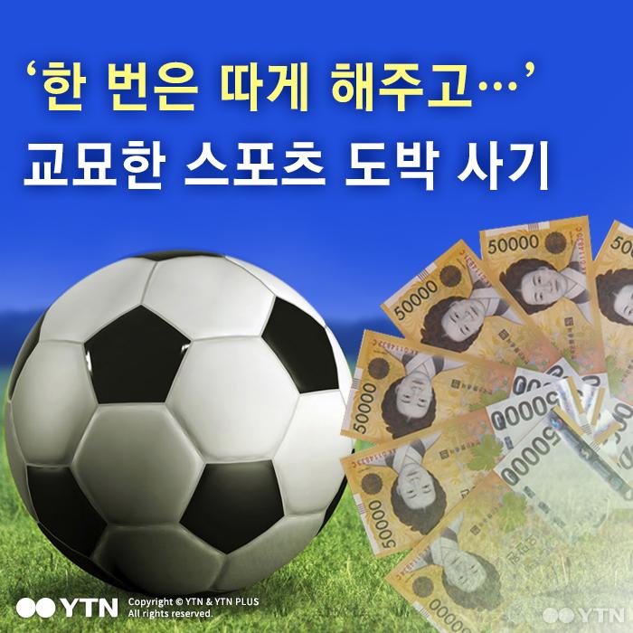 [한컷뉴스] '한 번은 따게 해주고…' 교묘한 스포츠 도박 사기