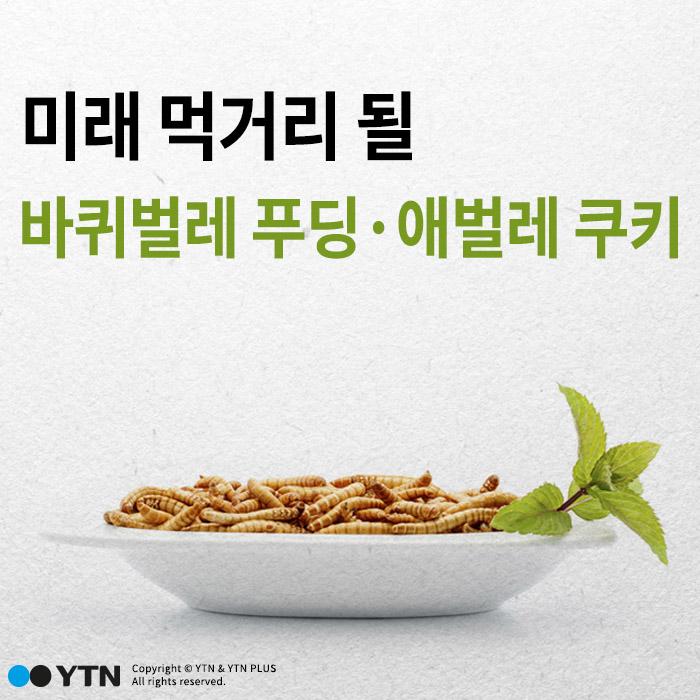 [한컷뉴스] '바퀴벌레 푸딩·애벌레 쿠키'가 미래 먹거리?