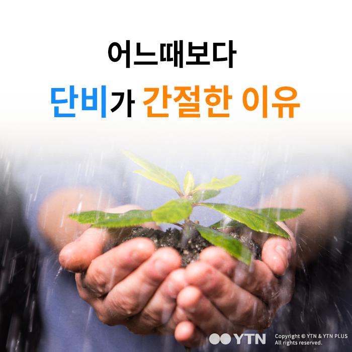 [한컷뉴스] 어느때보다 단비가 간절한 이유