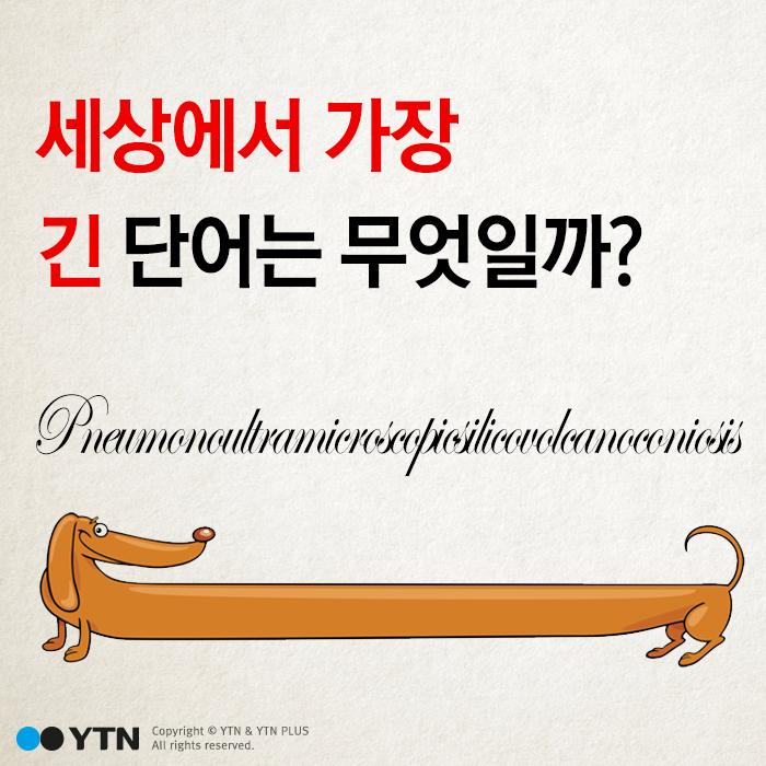 [한컷뉴스] 세상에서 '가장 긴 의미'를 가진 단어는?