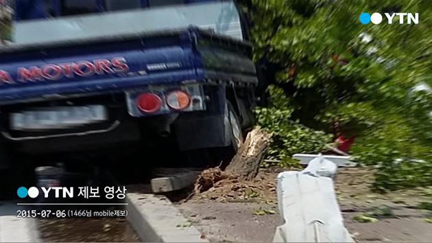 운전 중 '잠깐 통화'가 빚어낸 참상