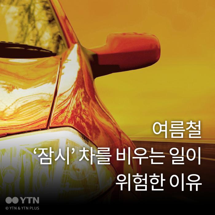[한컷뉴스] 여름철 '잠시' 차를 비우는 일이 위험한 이유