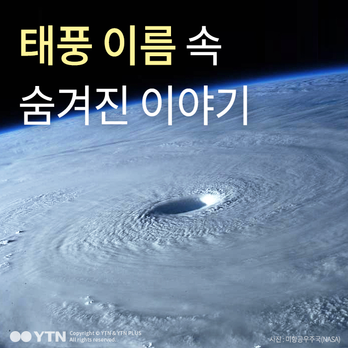 [한컷뉴스] '나비·고니·장미' 태풍 이름에 숨은 이야기