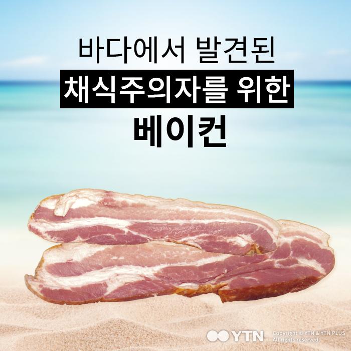 [한컷뉴스] 바다에서 찾아낸 채식주의자를 위한 베이컨