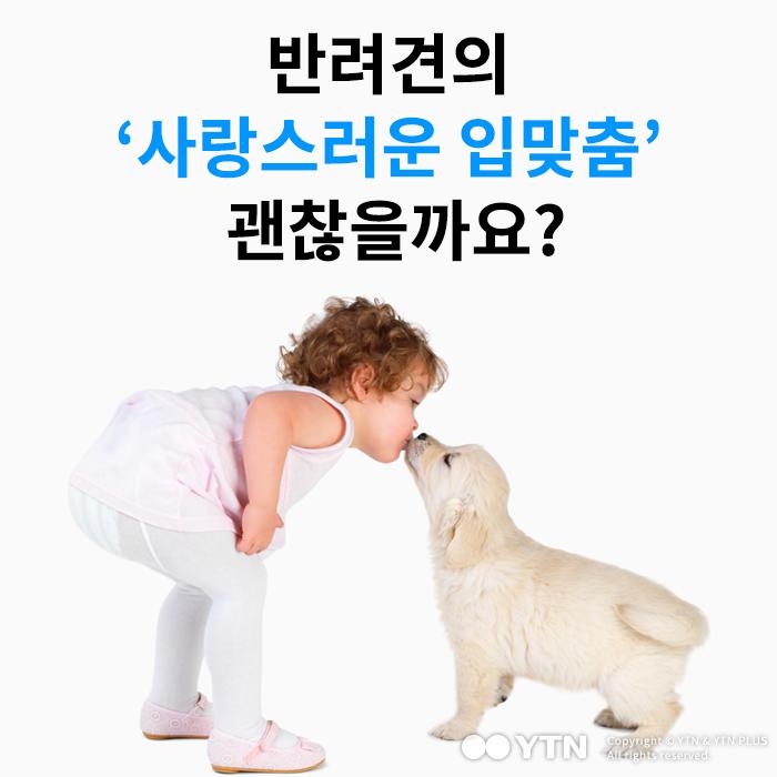 [한컷뉴스] 반려견의 '사랑스러운 입맞춤' 괜찮을까요?