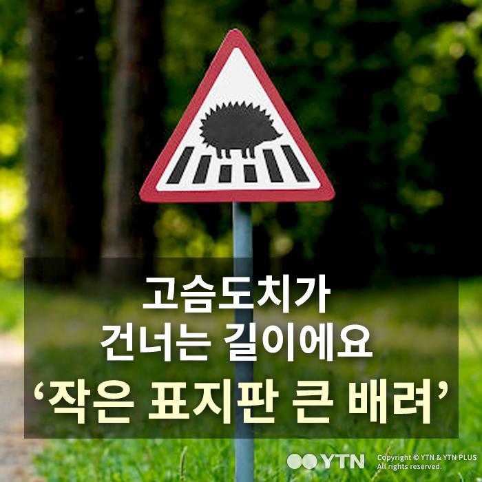 [한컷뉴스] 고슴도치 길이에요 '작은 표지판 큰 배려'