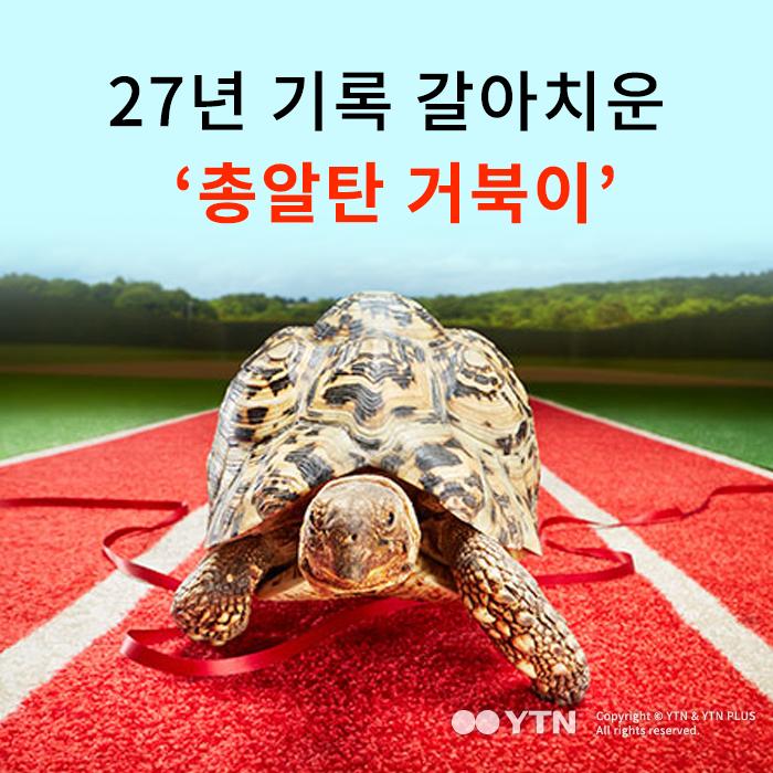 [한컷뉴스] 27년 기록 갈아치운 '총알탄 거북이'