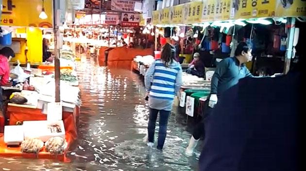 [영상] '슈퍼문 영향' 물바다 된 소래포구 어시장