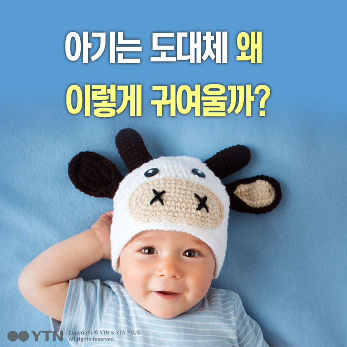 [한컷뉴스] 아기는 왜 이렇게 귀여울까?