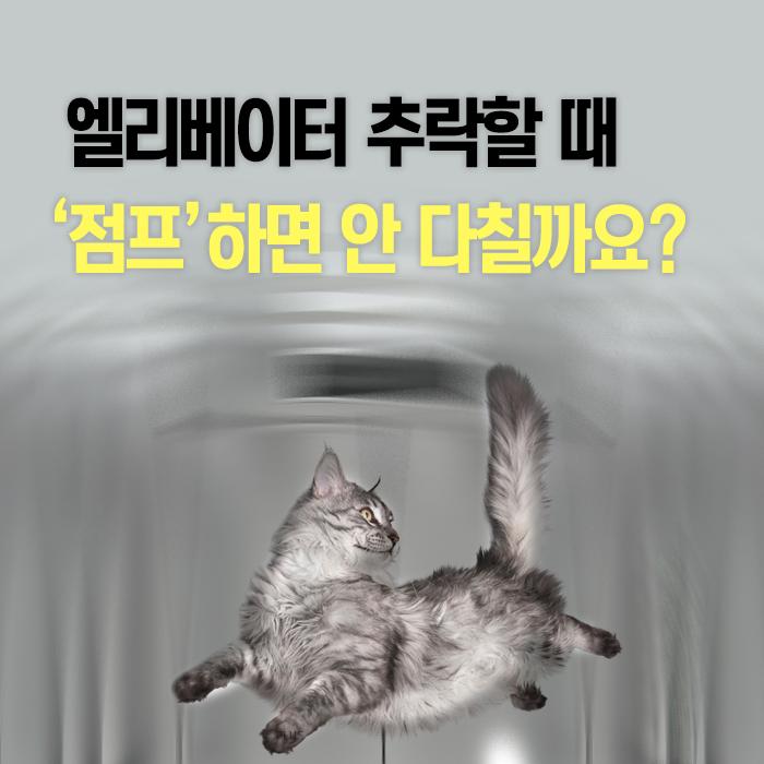 [한컷뉴스] 엘리베이터 추락할 때 '점프'하면 안 다칠까?