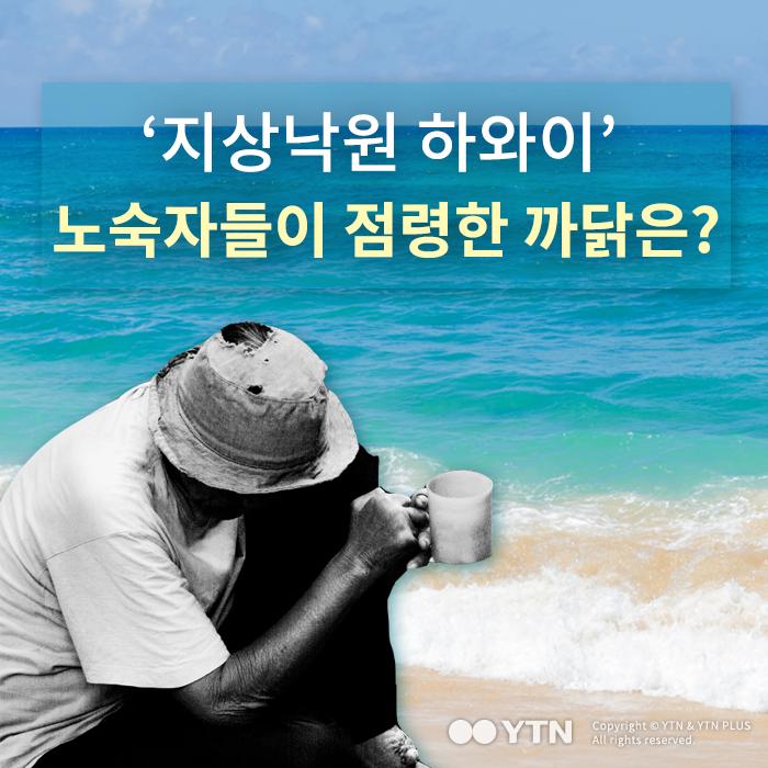 [한컷뉴스] '지상낙원 하와이' 노숙자들이 점령한 까닭은?