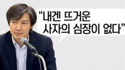 [인물파일] 조국 교수는 '밤의 야당 대표'?