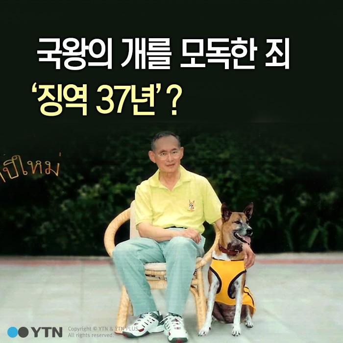[한컷뉴스] 국왕의 개를 모독한 죄 '징역 37년'?