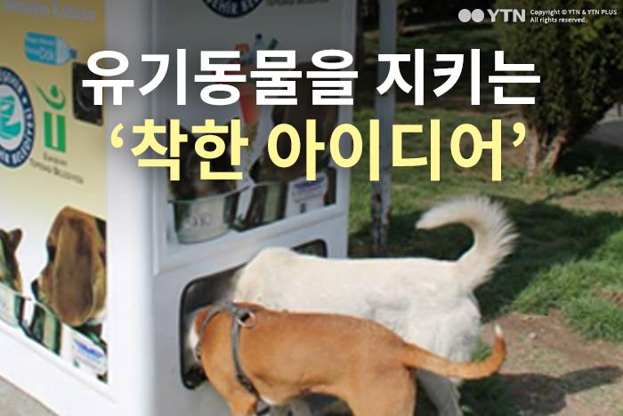 [한컷뉴스] 유기동물을 지키는 '착한 아이디어'