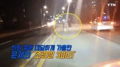 [영상] 도로 질주한 조랑말 3총사 '말 같지 않은 추격전'