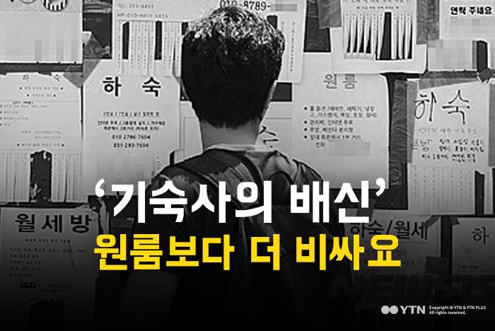 [한컷뉴스] '기숙사의 배신' 원룸보다 더 비싸요