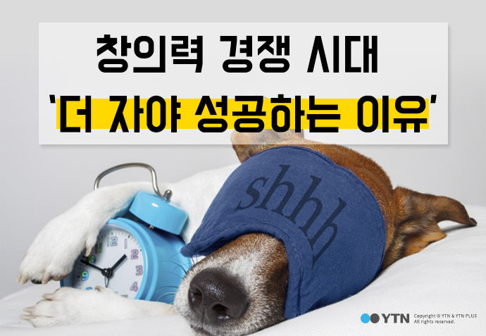 [한컷뉴스] 창의력 경쟁 시대 '더 자야 성공하는 이유'