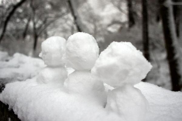 [포토에세이- 남양주] 겨울과 봄 사이 2월쯤