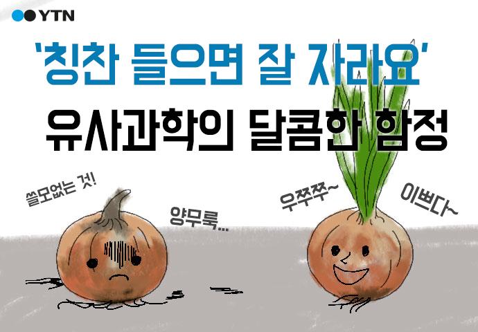 [한컷뉴스] '칭찬 들으면 잘 자라' 유사과학의 달콤한 함정