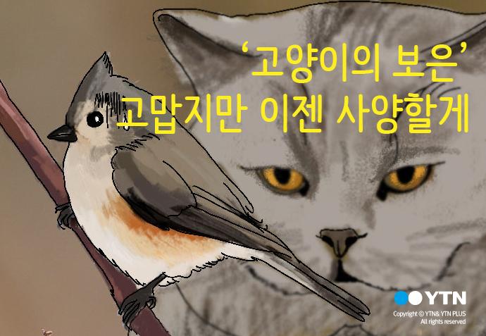 [한컷뉴스] '고양이의 보은' 고맙지만 이젠 사양할게